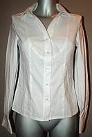 Блузка белая в полоску с круглым воротником Р42