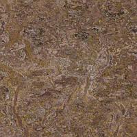 Практичный линолеум Forbo Marmoleum Vivace _ 3425