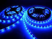 Светодиодная лента MTK (аналог LS606) синяя smd 5050 14.4Вт/м. 60SMD/м двойной плотности