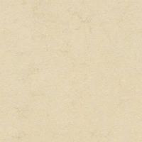 Качественный линолеум Forbo Marmoleum Fresco 2мм _ 3858