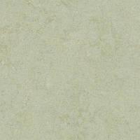 Качественный линолеум Forbo Marmoleum Fresco 2мм _3884