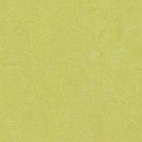Качественный линолеум Forbo Marmoleum Fresco 2мм _ 3885