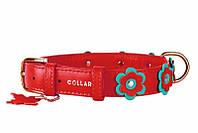 CoLLar Glamour ошейник для собак мелких пород (длина 27-36см, диаметр - 15 мм) (3501)