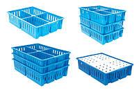 Ящик для перевозки суточных цыплят на 4 отделение