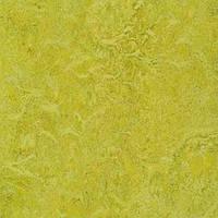 Стильный, натуральный линолеум Forbo Marmoleum Real 2мм _ 3224