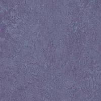 Стильный, натуральный линолеум Forbo Marmoleum Real 2мм _ 3221