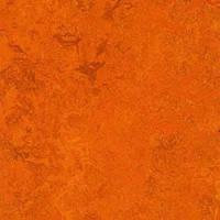 Стильный, натуральный линолеум Forbo Marmoleum Real 2мм _ 3126