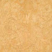 Стильный, натуральный линолеум Forbo Marmoleum Real 2мм _ 3173