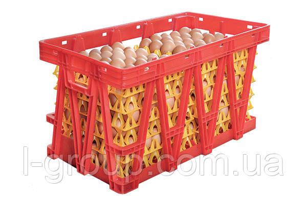 Пластикові ящики для перевезення яєць в лотках