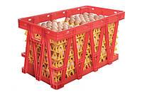 Пластиковые ящики для перевозки яиц в лотках, фото 1