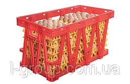 Пластиковые ящики для перевозки яиц в лотках