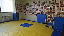 Будо-мат татами «ласточкин хвост» (EVA 50мм, размер 1х1м, Турция), фото 2