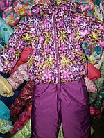 """Демисезонный костюм  модель """"Крошка""""  поляна слива цветной"""