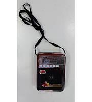 Радиоприемник NNS NS-308    .e