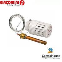 Термоголовка Giacomini R462LX021 с выносным датчиком