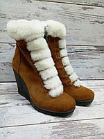 Женские ботинки на танкетке, натуральная замша, коричневые / ботинки  женские зимние, модные