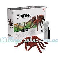 """Паук на радиоуправлении """"Spider"""": 16х17х5см, 2-х канальный"""
