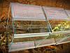 Террариум Terra для пауков птицеедов , фото 2
