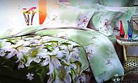 Полуторный комплект постельного белья Зеленая Нежность