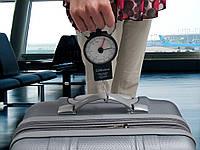 Весы для взвешивания багажа в аэропортах 34 кг, продуктов, рыбы