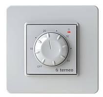 Терморегулятор termeo rtp