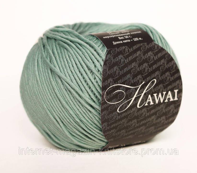 Пряжа Сеам Hawai фисташковый