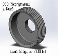 Шкив ведущий  81.30.151(-1)