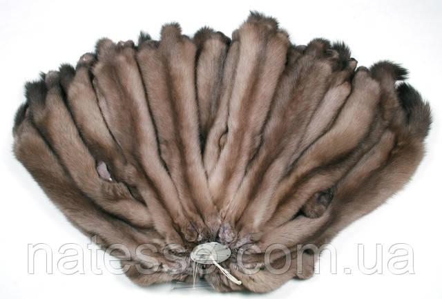 Купить шкуры мех соболя Тортора на шубу жилет Киев Одесса Днепропетровск Днепр Украина Харьков