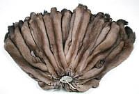 Шкуры соболя тортора, выделанные, шубные наборы