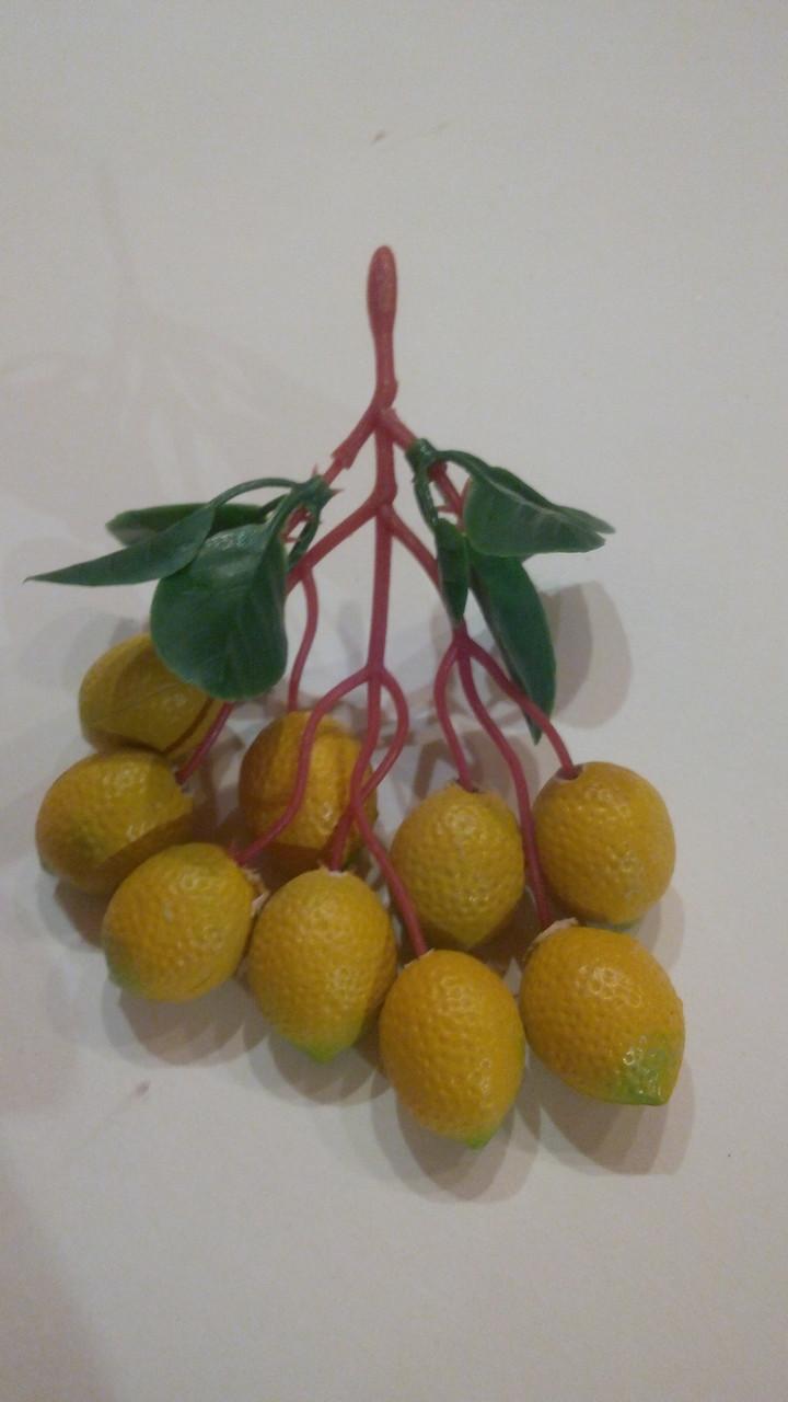 Лимоны на веточке