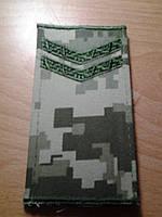 Погоны новые мл.сержант