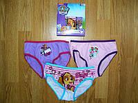 Трусики для девочек, Disney, в остатке 2/3 рр, фото 1