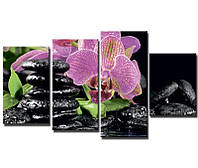 "Модульная картина из 4-х частей ""Орхидеи. Спа"""