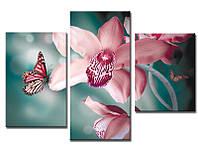 """Модульная картина из 3-х частей """"Орхидея розовая"""""""