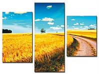 """Модульная картина из 3-х частей """"Пшеничное поле"""""""