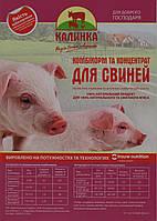 Комбикорм для свиней ТМ «Калинка» Престартер для поросят (5-40 дн) 10 кг