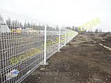 Панельні забірні сітки для дачі, фото 3