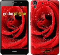 """Чехол на Huawei Y6 Красная роза """"529c-333"""""""