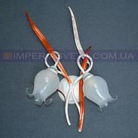 Декоративное бра, светильник настенный IMPERIA двухламповое LUX-511422