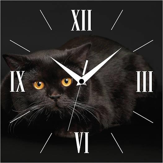 """Настенные часы 300Х300Х16мм """"Кот в ночи"""" [МДФ, Открытые]"""