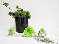 """Экосувениры со мхом от """"Artis Green"""""""