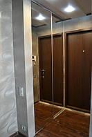 Зеркальный Шкаф-купе в прихожую, фото 1