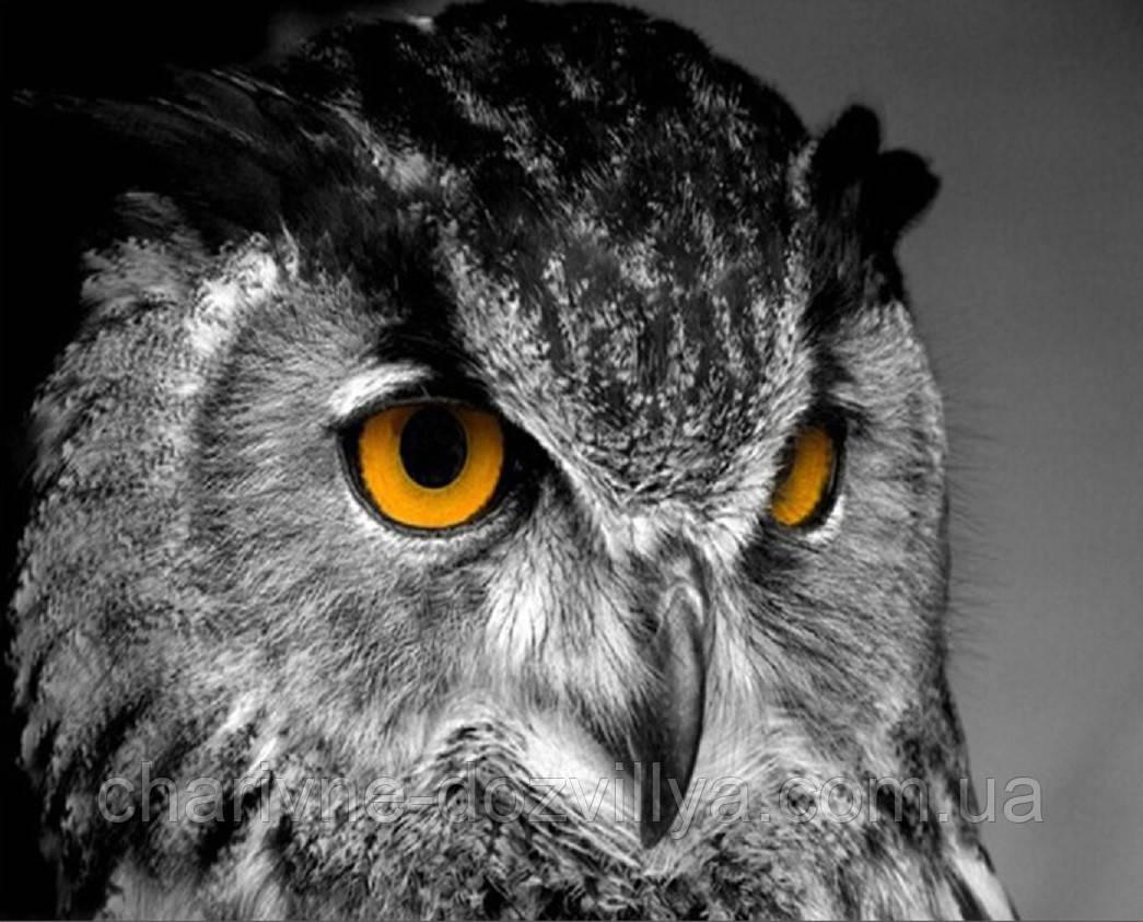 Символ вышивки сова