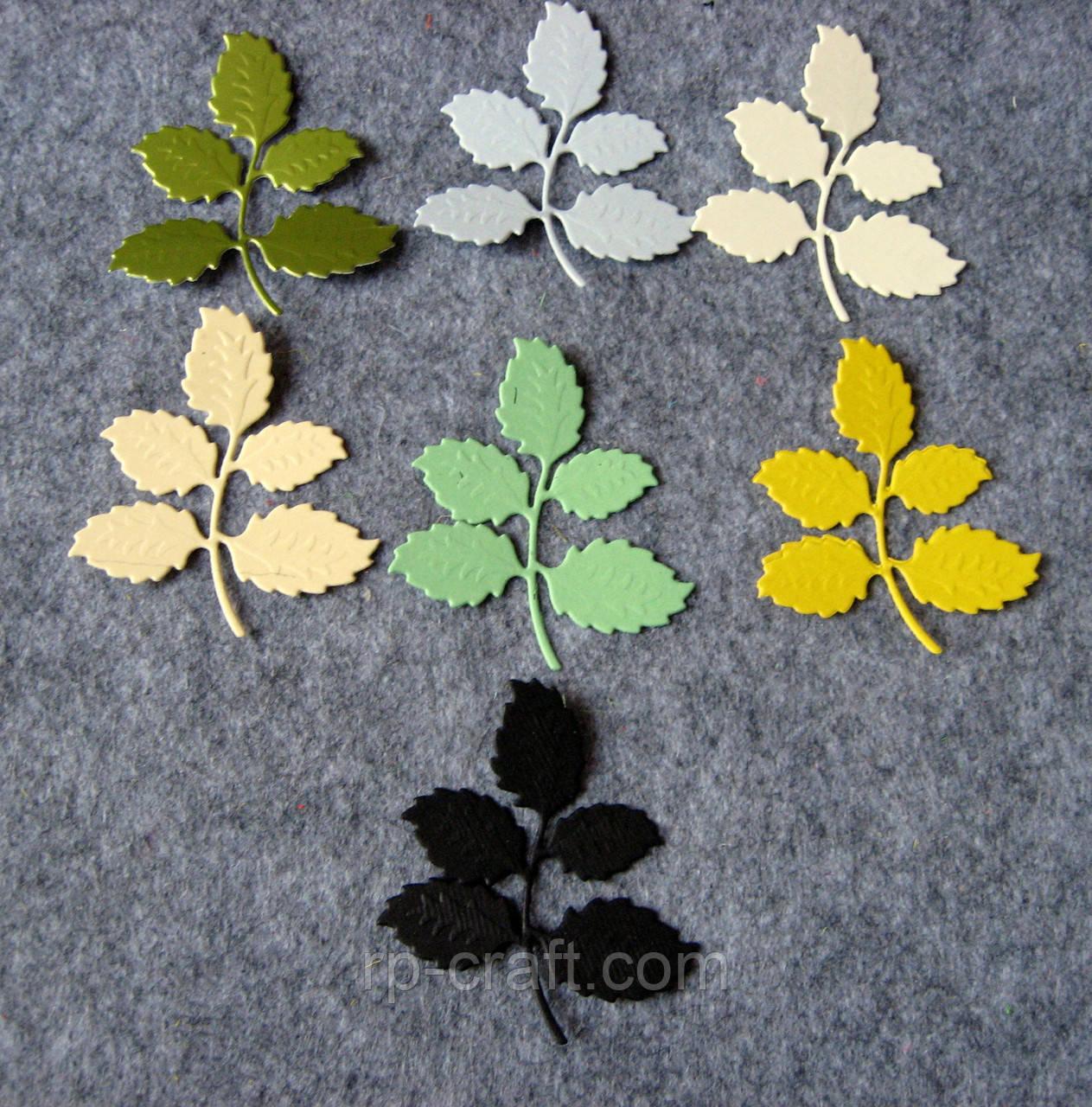 Вырубка из картона. Листья розы 50х56 мм