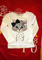 Кофточка для девочки H&M арт кошечка