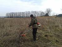 Покос травы Киев. Стрижка травы.