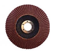 Диск лепестковый плоский WERK 125х22.2 мм (зернистость 100)