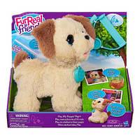 Интерактивная игрушка Hasbro FurReal Friends Щенок Пакс Pax My Poopin Pup