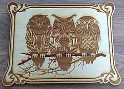 """Картина на дереве """"Три совы"""""""