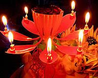 Свеча на торт музыкальная Лотос, фото 1